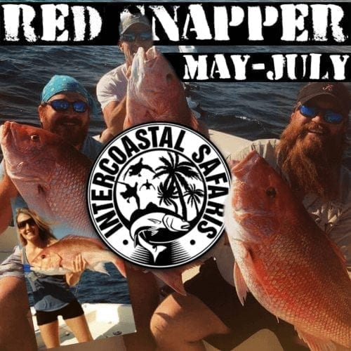 Men in a boat with caught red snapper