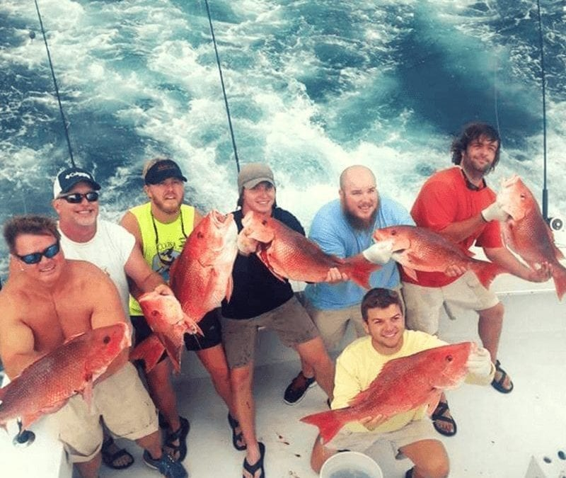 Red Snapper Regulations: The 2017 Season Is Here!
