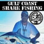 Gulf Coast Shark Fishing