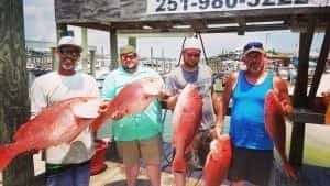 Red Snapper 2018 Fishing Recap – Intercoastal Safaris