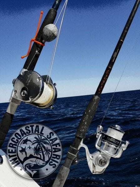 Saltwater Fishing School 15